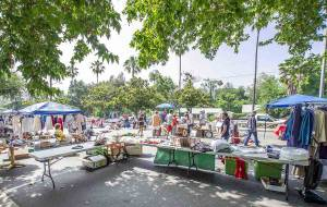 Friends of the Collinsville Community Library YARD SALE