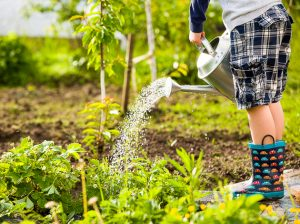 children gardening events